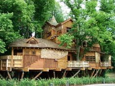 The Treehouse of Alnwick Garden in Northumberland, UK