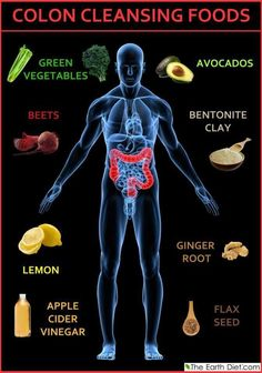 Colon Cleansing Foods.. The main function of the colon (main part of the large intestine) is to absorb the remaining water and electrolytes from the indigestible food matter, to accept and store food remains that were not digested in the small intestine, and to eliminate solid waste (feces) from the body.