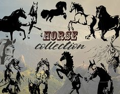 """Check out new work on my @Behance portfolio: """"Hand drawn horse collection, vector"""" http://be.net/gallery/54978501/Hand-drawn-horse-collection-vector"""