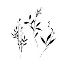 Botanicals by Lara Maju from Tattly Temporary Tattoos to make temporary tattoo crafts ink tattoo tattoo diy tattoo stickers Fake Tattoos, Wrist Tattoos, Mini Tattoos, New Tattoos, Small Tattoos, Tattoos For Guys, Tattoos For Women, Shoulder Tattoos, Tatoos