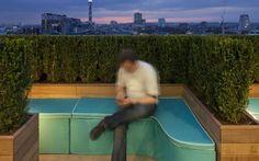 'Hedge Your Bets Secret Garden' roof terrace