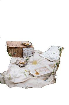 Food Png, Suitcase, Picnic, Picnics, Briefcase