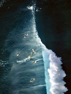 """surfsouthafrica:  """"The joy of surfing is so many things combined, from the physical exertion of it, to the challenge of it, to the mental side of the sport"""" -Kelly Slater Pipeline, Oahu, Hawaii. Photo: Alex MacLean."""