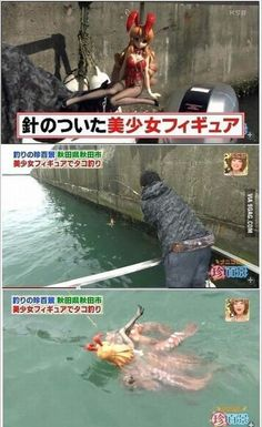 ROFL, this is funny Octopi are raping our plastic women Weird Pictures, Best Funny Pictures, Funny Photos, Funny Images, Memes Fr, Desu Desu, Fishing Tips, True Stories, Octopus