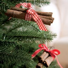 Cinnamon stick bundles - Craft - Your Home Online