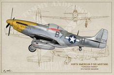 Ww2 Aircraft, Fighter Aircraft, Military Aircraft, Fighter Jets, American Legion Post, F-14 Tomcat, P51 Mustang, Military Equipment, Aviation Art