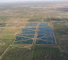 Fish farm in the landscape