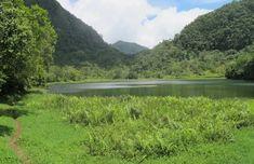 🇰🇲 Les 10 meilleurs endroits à visiter aux Comores 🇰🇲 – Tsilemewa™ Destinations, Site Archéologique, Parc National, Blog Voyage, River, Mountains, Nature, Outdoor, Small Places