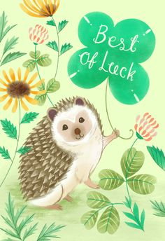 Lucky Hedgehog - Good Luck Card #greetingcards #printable #diy #goodluck Good Luck Cards, Holiday Messages, Happy St Patricks Day, Happy Birthday Greetings, Christmas Wishes, Diy Cards, Card Templates, Vintage Posters, Greeting Cards