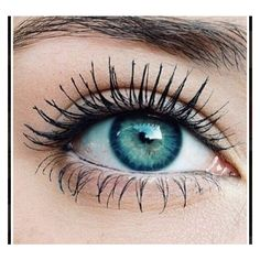 the PERFECT look long eyelashes, gorgeous turquoise eyes, and natural... ❤ liked on Polyvore featuring beauty products, makeup, eye makeup, false eyelashes and eye brow makeup