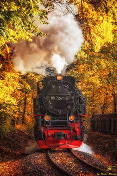 Photo Micha added a new photo. Steam Railway, Train Art, Train Pictures, Spur, Explorer, Bahn, Steam Locomotive, Train Tracks, Model Trains