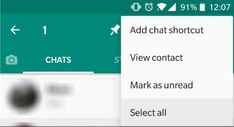 Android Users Receive Option to Select All Chats The Selection, Android, Ads, Cat Breeds