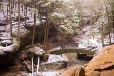 2. February: Old Man's Cave Loop (Hocking Hills State Park)