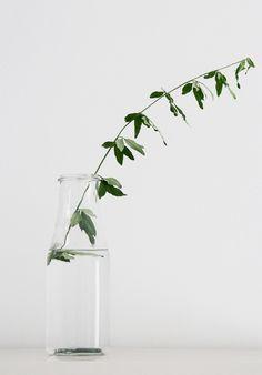 #grow #green #organic