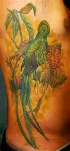 BinLooking For Unique Realistic Tattoos Quetzal Bird    I'd like to suggest my personal website about gift ideas and tips. The site is http://ideiadepresente.com  You're welcome to visiting my website!    [BR]  Eu gostaria de sugerir meu site pessoal de dicas de presentes, o site � http://ideiadepresente.com