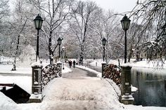 Winter view in a park in Riga, Latvia - Fine Art Photography, 8x12 print, winter photography, snow photography, nature photography, wall art by BlossomingDream on Etsy https://www.etsy.com/listing/172123220/winter-view-in-a-park-in-riga-latvia