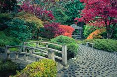 Japanese Garden at Butchart Gardens, Victoria, British Columbia.  #japanesegarden #butchartgardens #explorecanada