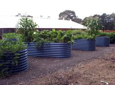 Galvanized Iron Raised Bed Gardens -  This is one of the most durable and economical ways to get started with a raised bed garden. Fast to install, in short time you'll have veggies ready to harvest.