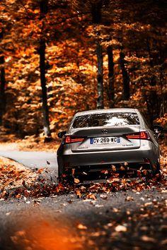 onlysupercars: [Credit:Alexis]