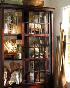 A shell-filled curiousity cabinet and oars.