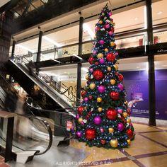 SLD christmas decoration 2014 / NATURE