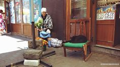 Babushka selling homegrown flowers at Odessa market. Ofcourse the cat get's the best seat.