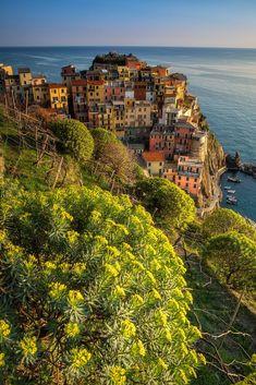 Cinque Terre (Italy) by Sandro Bisaro #italianholidaystravel