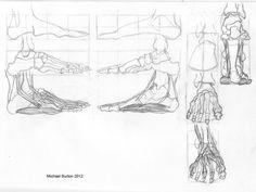 anatomy-of-the-foot.jpg 1,350×1,018 pixels