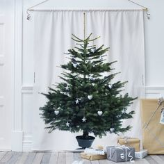 net-echt-kerstboom