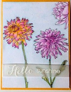 Resultado de imagen de tim holtz flower garden stamp set