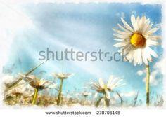 Margaridas Aquarelada Fotos, imagens e fotografias Stock | Shutterstock