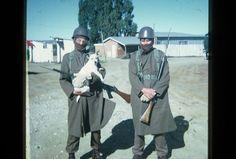 South Africa, African, War