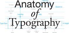 The Anatomy of Type #Anatomy #Typography