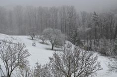 RE: 17.02.2014 - Aktuelle Wettermeldungen - 2