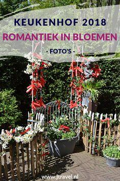 In 2018 bezocht ik opnieuw de Keukenhof in Lisse. Hier zie de mijn foto's van het thema van 2018: Romantiek in bloemen. Kijk je mee? #keukenhof #bloemententoonstelling #lisse #fotos #romantiekinbloemen #jtravel #jtravelblog