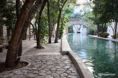 Occidental Grand Xcaret All Inclusive Resort (Mexico/Riviera Maya - Playa del Carmen) - All-inclusive Resort Reviews - TripAdvisor