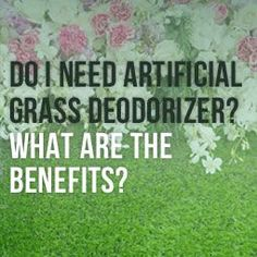 Find out the benefits of using deodorizer for your artificial grass and if it is really important to keep your lawn fresh and odor free. Pet Grass, Fake Grass, Small Backyard Patio, Backyard Landscaping, Landscaping Ideas, Dog Friendly Backyard, Fake Lawn, Lawn Turf, Synthetic Lawn