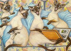 Chats, Siamois, Cats, Siamese, Gats, Siamès,