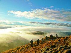 Mt. Pulag Philippines