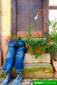 Sukkulenten In Korkstöpsel Pflanzen Und Großziehen   Pflanzen ... Sukkulenten In Korkstopsel Anlegen Eine Tolle Deko Idee