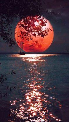 Moon Moon, Moon Art, Red Moon, Full Moon, Orange Moon, Moon Photography, Landscape Photography, Photography Composition, Photography Articles