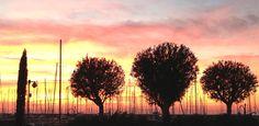#landscape of Marina di Scarlino