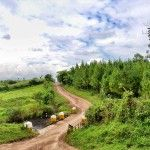 Uganda: A lush, green paradise! - http://overlandsphere.com/overland-travel/africa/east-africa/uganda/uganda-a-lush-green-paradise/117418 - TweetThe border crossing into Uganda was simple with the usual road tax charged in these African countries. We decided to ride to Jinja which is where Nile or White Nile supposedly startsI wont get into that because it seems people take the location of the Nile source pretty...