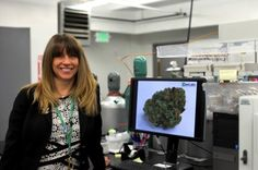 Genifer Murray, co-founder and president of CannLabs in Denver, tests more than 400 samples of cannabis flower and THC-infused products from 250 different businesses each day.