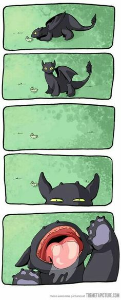 So Cute!!!! Toothless