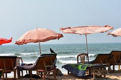 Benaulim and Colva beaches are popular for water sports, Palolem for beautiful sunsets, Cavelossim for Fisherman's Wharf restaurant, Majorda for finger licking Goan food and butterfly beach obvious…