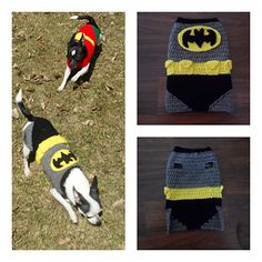 Batdog costume (wow these are becoming a trend) crochet pattern on Ravelry (she also has Robin outfit on her store for the set)