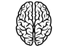 T Rex Skull Dinosaur Fossil by DecalPhanatics on Etsy Brain Vector, Skull Silhouette, Silhouette Vector, Human Brain Drawing, Brain Icon, Brain Illustration, Pumkin Carving, Brain Logo, Tatoo