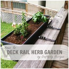 Small Space Gardening (20+ Great Ideas)