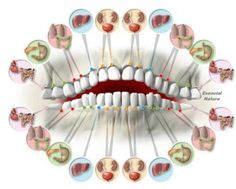 Читаем по зубам о болезнях… Доктора удивлены точностью этого метода!